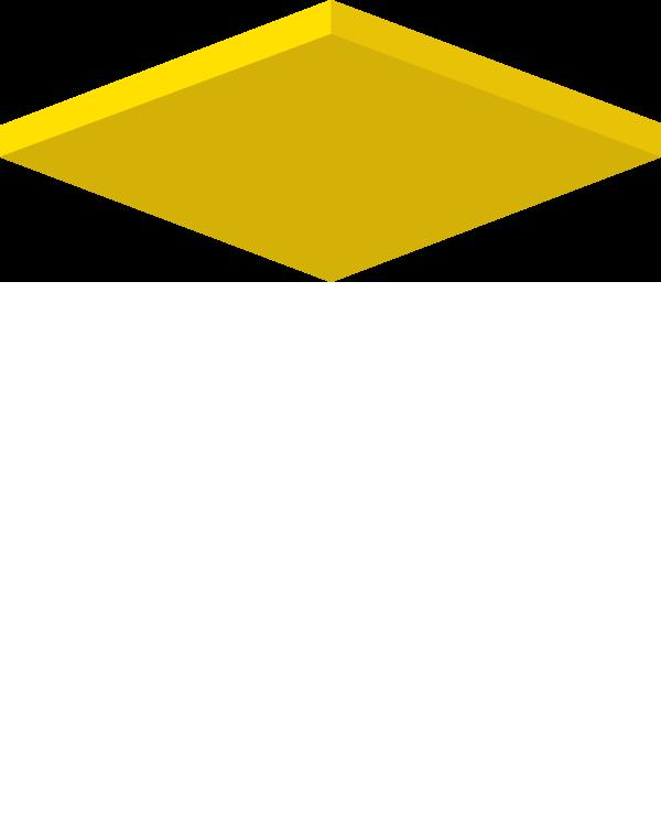 CSV-TRAINING-LOGO-roof2